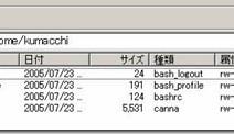 FTPサーバがvsFTPdの時、FFFTPの所有者表示が数字になっているのをアカウント名表示にするには?
