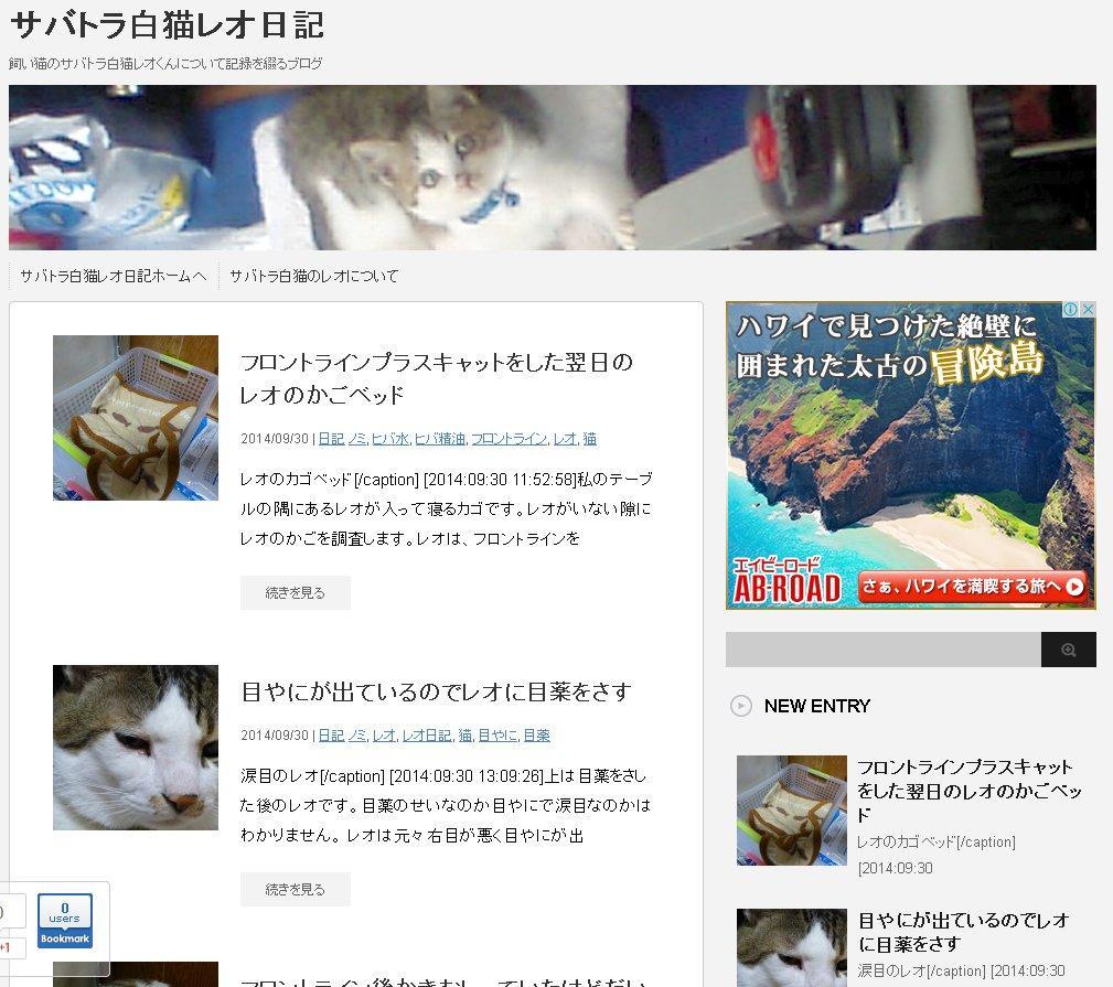 サバトラ白猫レオ日記